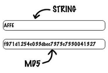 رمز نگاری MD5