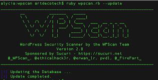 اسکنر wp scan