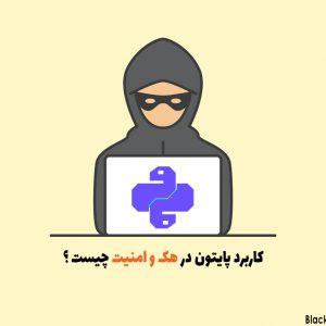 کاربرد پایتون در هک و امنیت